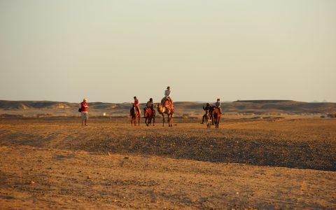 woestijn excursie