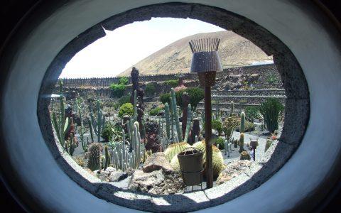 bij Jardin de Cactus